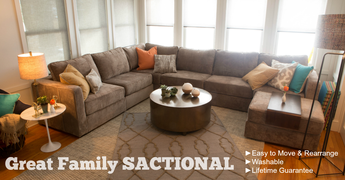 Lovesac Sectional Couch Called a SACTIONAL
